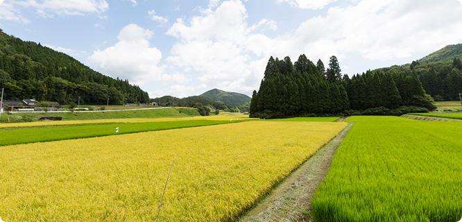 岡山県新見市風景